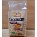 Krounchy bio – 7 fruits