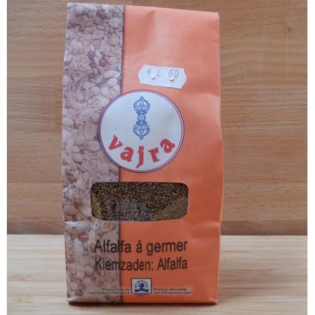 Alfalfa bio à germer