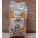 Maïs bio pour Popcorn